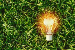 Lightbulb on green grass. concept energy. Power stock photography