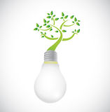 Lightbulb and green growing tree. illustration Stock Images