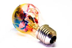 Lightbulb i målarfärg av olika färger royaltyfri foto