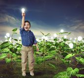 Lightbulb in a ideas field Royalty Free Stock Photography