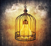 Lightbulb klatka Zdjęcia Stock