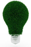 Lightbulb made of green grass Royalty Free Stock Photo