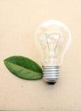 Lightbulb met groene bladeren Stock Afbeeldingen