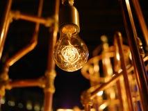 Lightbulb met Koperpijpen Royalty-vrije Stock Afbeelding
