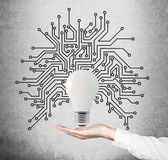 Lightbulb with microcircuit Stock Images