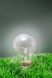 Lightbulb op groen gras Royalty-vrije Stock Afbeeldingen