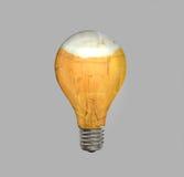 Lightbulb pełno piwo Obrazy Royalty Free