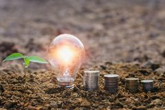 Lightbulb with small tree and money stack on soil in nature. con. Cept saving energy stock photos