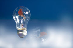 Lightbulb SnowGlobe Royalty Free Stock Photos