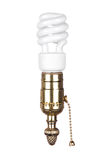 Lightbulb and socket with pull chain Stock Photography