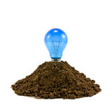 Lightbulb in soil Stock Images
