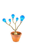 Lightbulb tree Stock Images