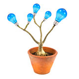 Lightbulb tree. In pot isolated on white background Stock Photography