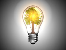 Lightbulb with tree inside it and light. Environment and green energy. Over grey Stock Photography