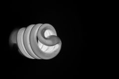 Lightbulb. White lightbulb in black background Stock Photography