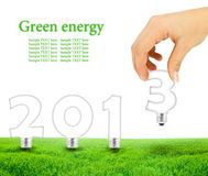 Lightbulbs. Scene of the hand plant lightbulb forming 2013 on green field Royalty Free Stock Image