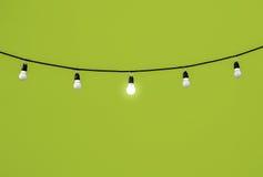 Lightbulbs on green Royalty Free Stock Image