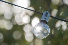 Lightbulbs hanging outdoor Stock Photography