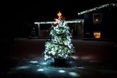 Lighted christmas tree at night stock photo
