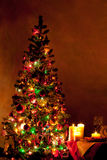 Lighted decorated Christmas tree Stock Images