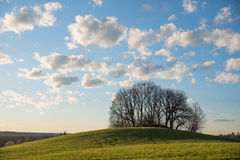 Lighted hill in the evening sun, blue sky with cumulus clouds Royalty Free Stock Photography