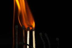Lighted match Royalty Free Stock Photography