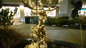 Lighted reindeer Stock Photo