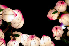 Lightened chinese bellflowers Stock Photo
