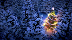 Lightened christmas tree in pine woods Stock Photography