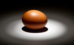 Lightened egg in the dark Royalty Free Stock Photos