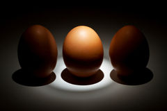 Lightened egg between two eggs Stock Image
