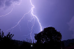 Lightening Roots At Night Striking Near Tree. Thunderstorm with lightening at night Stock Image