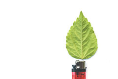 Lighter with green leaf, burn concept Stock Photo