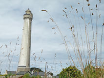 Lighthouse. On the coast of France with grass stems in the foreground Royalty Free Stock Photos