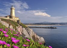 Lighthouse. On a cliff with flowers Royalty Free Stock Images