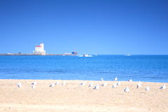 Lighthouse 4. Beach, seagulls and Fairport Harbor Lighthouse Stock Photography