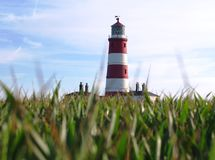 Lighthouse. Happisburgh red and white striped lighthouse through the grass and crop fields of the surrounding farmland Royalty Free Stock Images