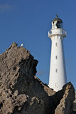 Lighthouse above coast line Royalty Free Stock Image