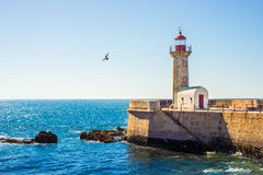 Lighthouse Porto sea sun ocean Stock Photography