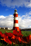 Lighthouse in autumn Royalty Free Stock Photo