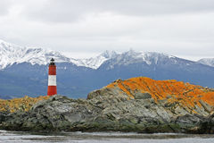 Lighthouse in Beagle Channel at Tierra Del Fuego, Argentina Stock Image
