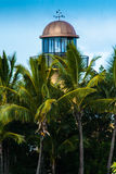 Lighthouse Behind The Palm Trees. A lighthouse in the Sea World, Gold Coast, Queensland, Australia stock photo