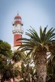 Lighthouse behind Palm Trees, Swakopmund, Namibia stock photos