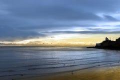 Lighthouse and birds on beach Stock Photography
