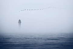 Lighthouse and birds in the sky Royalty Free Stock Photo