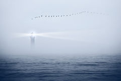 Lighthouse and birds in the sky Royalty Free Stock Photography