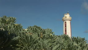 Lighthouse on Bonaire stock video
