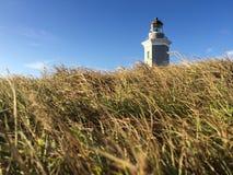 Lighthouse in Cabo Rojo, Puerto Rico. Morning view of lighthouse in Cabo Rojo, Puerto Rico Royalty Free Stock Photo