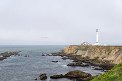 Lighthouse on the coast of the Pacific Stock Image