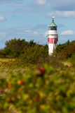 Lighthouse in denmark Royalty Free Stock Image